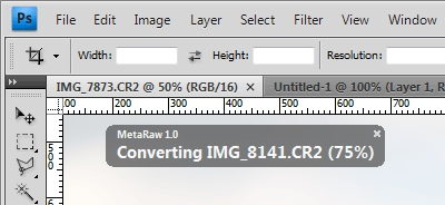 MetaRaw Extends the Functionality of Adobe Camera Raw